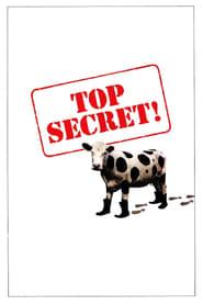 Top secret ! streaming vf
