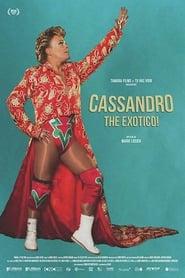 Cassandro, the exotico streaming vf