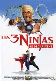 Les 3 Ninjas se déchainent streaming vf