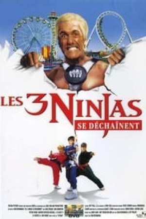 Les 3 Ninjas se déchainent