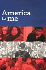 America to Me streaming vf