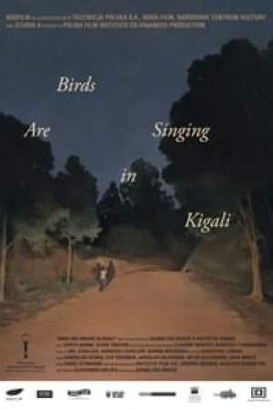Ptaki śpiewają w Kigali