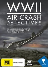 WWII Air Crash Detectives streaming vf