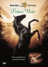 Prince Noir streaming vf