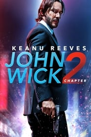 Image for movie John Wick: Chapter 2 (2017)