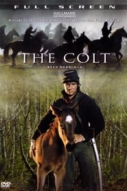 image for movie The Colt (2005)