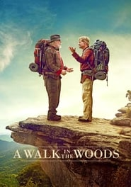 A Walk in the Woods (2015)
