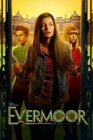 The Evermoor Chronicles (2014)