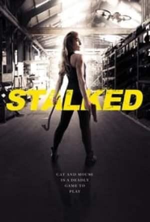 Stalked Dublado Online