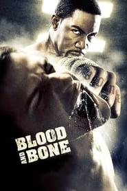 Blood and Bone streaming vf