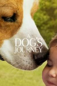 A Dog's Journey streaming vf