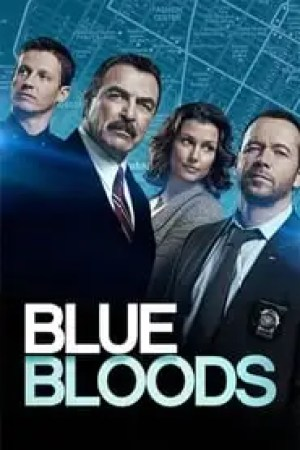 Blue Bloods streaming vf