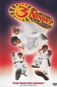 Ninja Kids 3 : Les 3 Ninjas se révoltent streaming vf