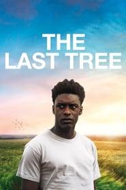 The Last Tree streaming vf