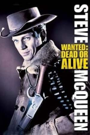 Wanted: Dead or Alive Full online