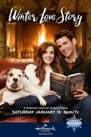 Winter Love Story Poster