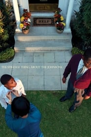 The Strange Thing About the Johnsons (2011)