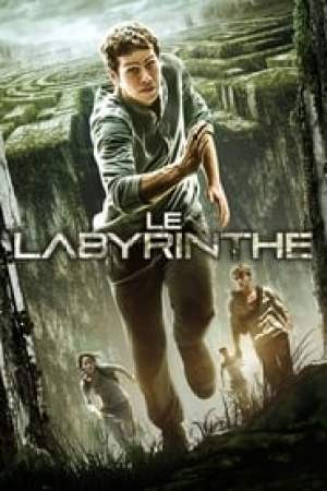 Le Labyrinthe streaming vf