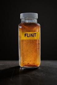 Flint (2017)