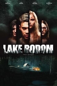 Lake Bodom streaming vf