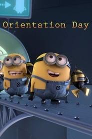 La Folie des Minions : La Journée d'Orientation streaming vf