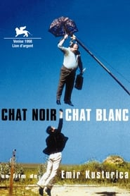 Chat noir, Chat blanc Poster