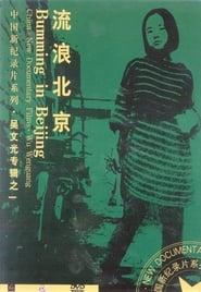 Bumming in Beijing: The Last Dreamers (1990)