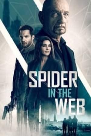 Spider in the Web Dublado Online