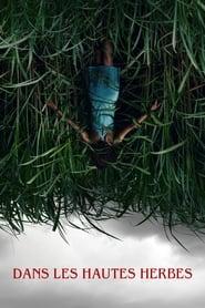 Dans les hautes herbes streaming vf