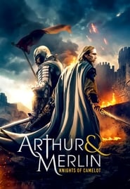 Arthur & Merlin: Knights of Camelot streaming vf
