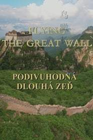 Flying the Great Wall (2017)