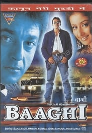 Baaghi 2000 Hindi Movie WebRip 400mb 480p 1.3GB 720p 5GB 11GB 1080p