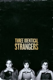 image for Three Identical Strangers (2018)