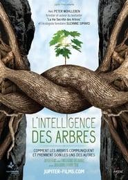 L'intelligence des Arbres Poster