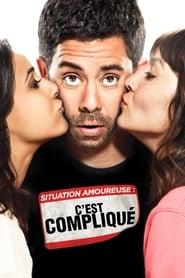 Situation amoureuse - C'est compliqué Poster
