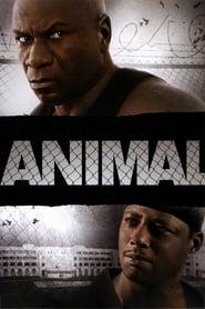 Animal streaming vf
