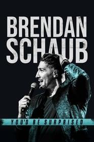 Brendan Schaub: You'd Be Surprised streaming vf