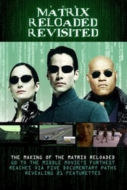 The Matrix Reloaded Revisited (2004)
