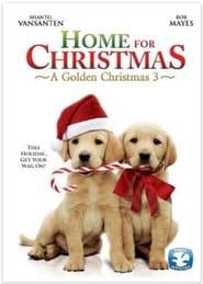 A Golden Christmas 3 (2013)