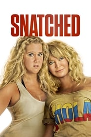 image for Snatched (2017)