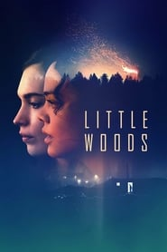 Little Woods Poster