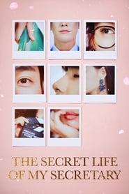 The Secret Life of My Secretary (2019) Subtitle Indonesia