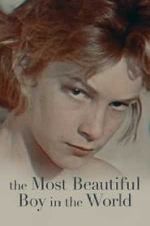 The Most Beautiful Boy in the World streaming vf
