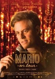 Mario on Tour Poster