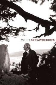 Wild Strawberries streaming vf