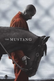 The Mustang streaming vf