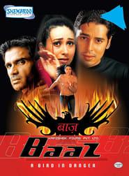 Baaz: A Bird in Danger 2003 Hindi Movie AMZN WebRip 400mb 480p 1.3GB 720p 4GB 11GB 1080p