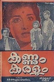 image for movie Kannum Karalum (1962)