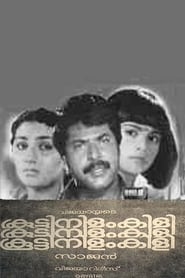 image for movie Koottinilamkili (1984)