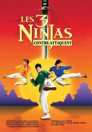 Ninja Kids 2 : Les 3 Ninjas contre-attaquent streaming vf